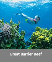 images/Great_Barrier_Reef-.jpg